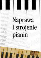 największy fortepian ciekawy instrument